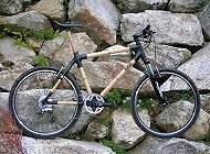Bambus Bike